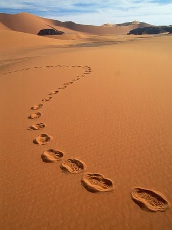 https://imgc.artprintimages.com/img/print/footprints-in-sand_u-l-pzko550.jpg?p=0