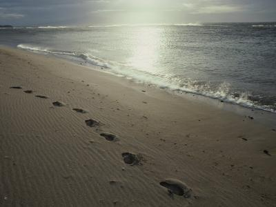 Footprints in the Sand on a Beach-Todd Gipstein-Photographic Print