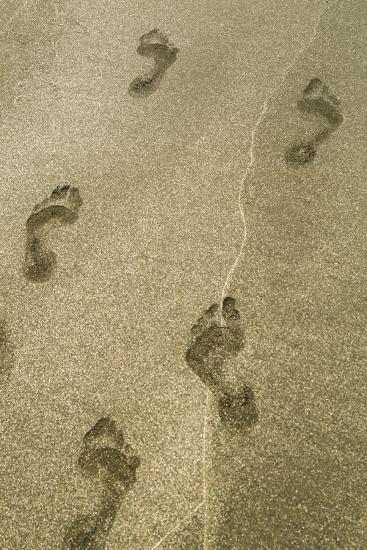 Footprints in the Sand, Puerta Vallarta, Mexico-Julien McRoberts-Photographic Print