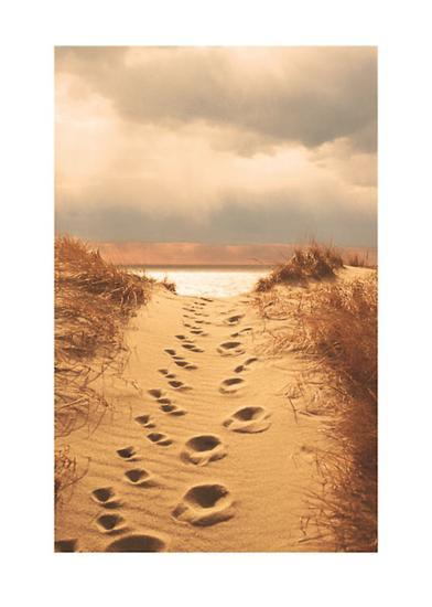 Footprints in the Sand-Jane Booth Vollers-Art Print