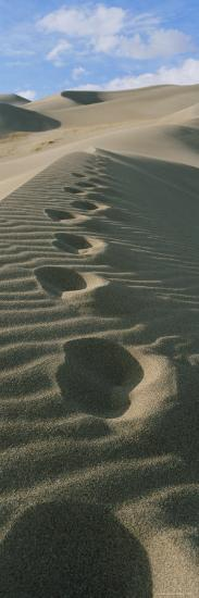 Footprints in the Sand-Bill Hatcher-Photographic Print