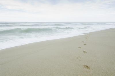 Footprints on Beach, Nantucket-Nine OK-Photographic Print
