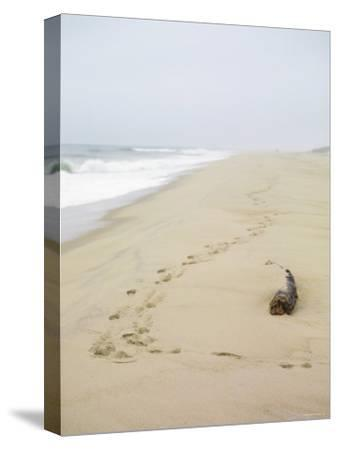 Footprints on Tranquil Beach