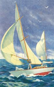 Fore-Deck Man, Yacht Racing
