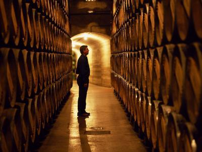 Foreman of Works Inspects Barrels of Rioja Wine in the Underground Cellars at Muga Winery-John Warburton-lee-Photographic Print