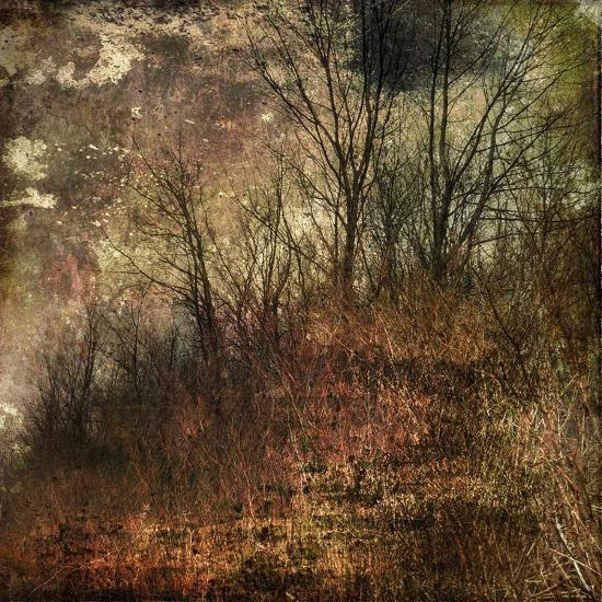 Forest 4-Jean-Fran?ois Dupuis-Art Print