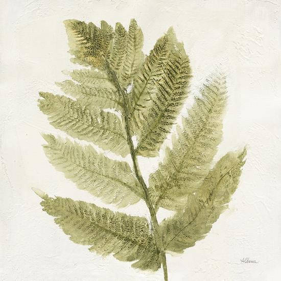 Forest Ferns I-Albena Hristova-Art Print