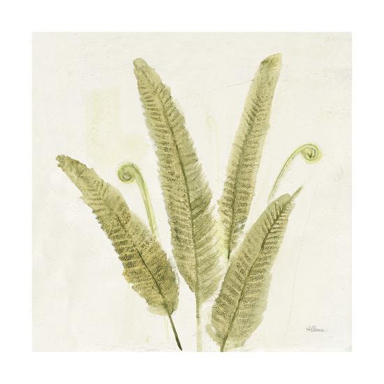 Forest Ferns II v2-Albena Hristova-Art Print