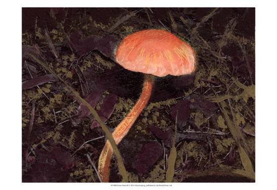 Forest Floor III-Alicia Ludwig-Art Print