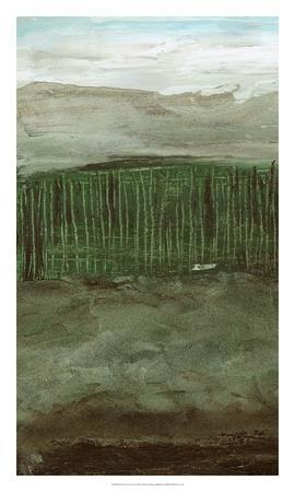 https://imgc.artprintimages.com/img/print/forest-for-the-trees-i_u-l-f8qebi0.jpg?p=0