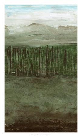 https://imgc.artprintimages.com/img/print/forest-for-the-trees-ii_u-l-f8qebm0.jpg?p=0