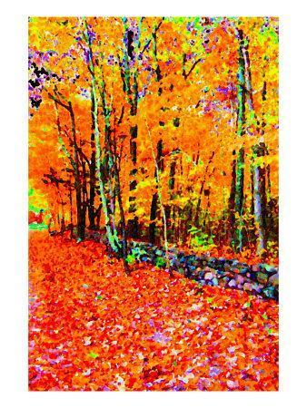 https://imgc.artprintimages.com/img/print/forest-in-autumn_u-l-p9b6y10.jpg?artPerspective=n