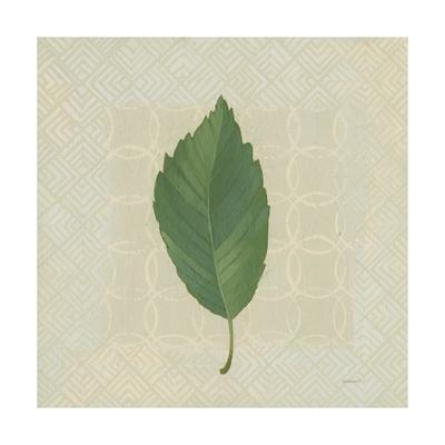 https://imgc.artprintimages.com/img/print/forest-leaves-iii-no-lines_u-l-q1b085m0.jpg?p=0
