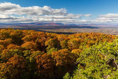 Forest Of Autumn Leaves Below The Bonticou Crag Trail In Shawangunk Mts. Mohonk Preserve, New York-Mike Cavaroc-Photographic Print