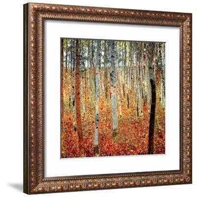 Forest of Beech Trees, c.1903-Gustav Klimt-Framed Art Print