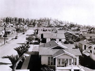 Forest of Derricks in the Signal Hill Oil Fields Near Long Beach, California, 1933
