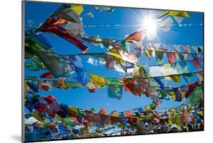 Forest' of Prayer Flags Backlit Against the Sun at the Top of Khardung La Pass (5,606M) North of…
