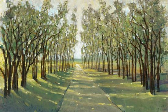Forest Path-Tim OToole-Art Print