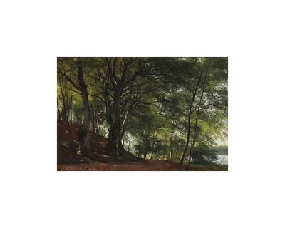 Forest Scene from Soro, Denmark-Carl Frederic Aagaard-Premium Giclee Print