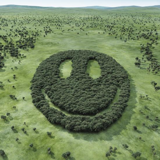 Forest Shaped Smiley-Hiroshi Watanabe-Premium Photographic Print