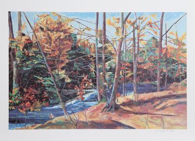 Forest Stream-John Healy-Collectable Print