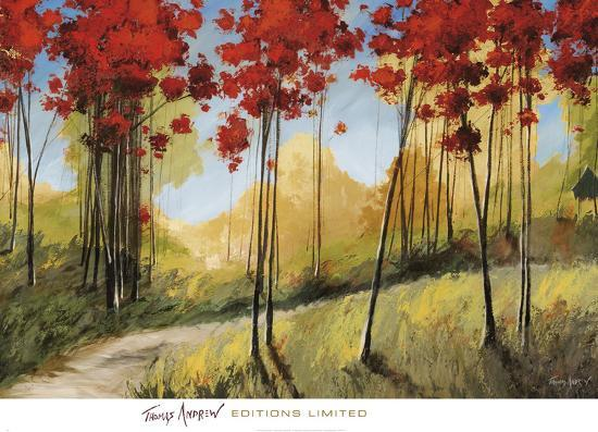 Forest Trail-Thomas Andrew-Art Print