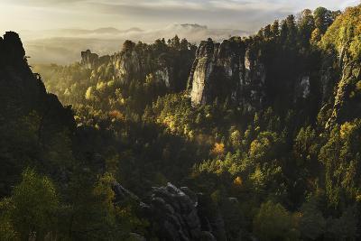 Forest Whispers-Karsten Wrobel-Photographic Print