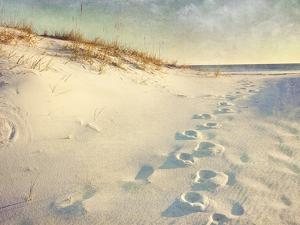 Footprints in the Sand Dunes Leading to the Ocean at Sunset. Soft Artistic Treatment with Canvas Te by forestpath