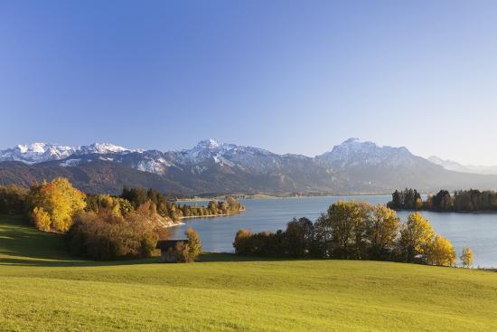 Forggensee Lake and Allgau Alps, Fussen, Ostallgau, Allgau, Allgau Alps, Bavaria, Germany, Europe-Markus Lange-Photographic Print