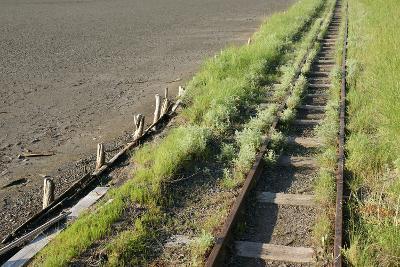 Forgotten Railway - 26-akorotaev-Photographic Print