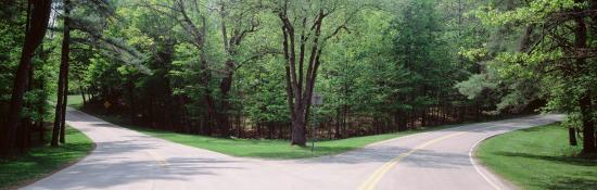 Fork in a Road Surrounded by Trees, Park Road, Letchworth State Park, New York State, USA--Photographic Print