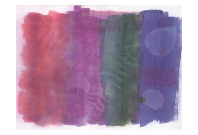 Fossil Color Splash-Smith Haynes-Art Print