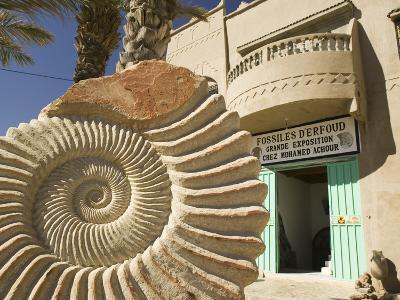 Fossil Shop, Erfoud, Ziz Valley, Morocco-Walter Bibikow-Photographic Print