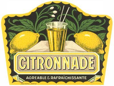 Citronnade Lemon Drink Label by Found Image Press