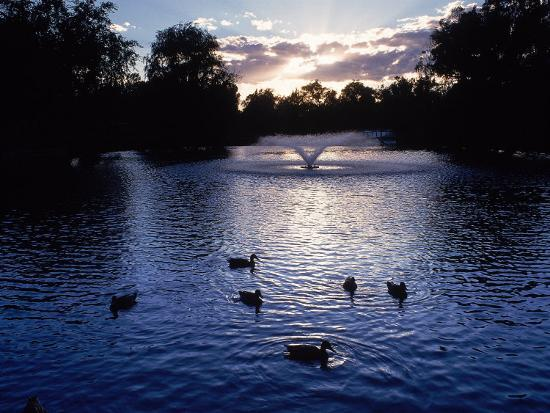 Fountain & Ducks in Water at Sunset-Howard Sokol-Photographic Print