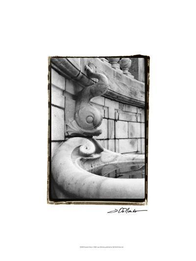 Fountain Fishes-Laura Denardo-Art Print