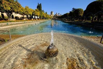 Fountain in the Alcazar De Los Reyes Cristianos, Cordoba, Andalucia, Spain-Carlo Morucchio-Photographic Print