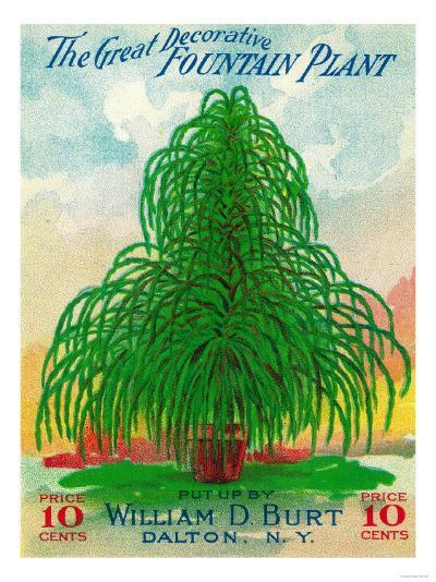 Fountain Plant Seed Packet-Lantern Press-Art Print