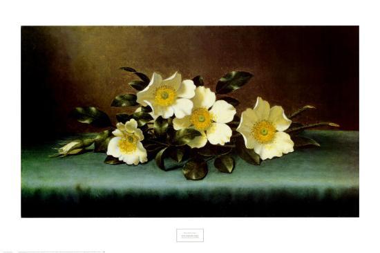 Four Cherokee Roses-Martin Johnson Heade-Art Print