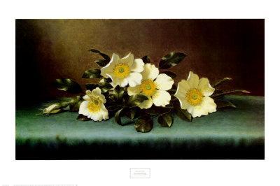 https://imgc.artprintimages.com/img/print/four-cherokee-roses_u-l-e6xei0.jpg?p=0