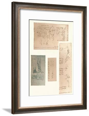 Four drawings illustrating the theory of the movements of the human figure, c1472-c1519 (1883)-Leonardo da Vinci-Framed Giclee Print