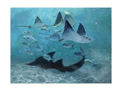 Four Eagle Rays, Shark and Permit School, 2000-Stanley Meltzoff-Giclee Print
