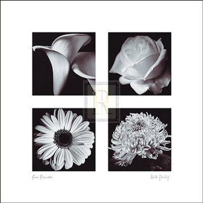 https://imgc.artprintimages.com/img/print/four-flowers_u-l-e88rq0.jpg?p=0