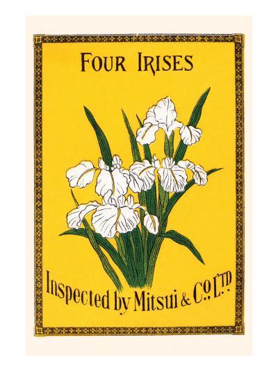 Four Irises--Art Print