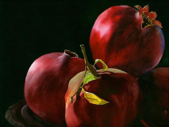 Four Pomegranates-Terri Hill-Premium Giclee Print