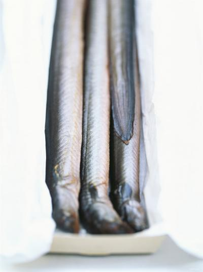 Four Smoked Eels in a Box-Peter Medilek-Photographic Print