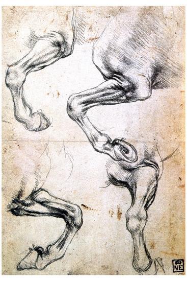 Four Studies of Horses' Legs, C1500-Leonardo da Vinci-Giclee Print