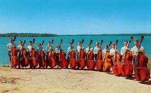 Fourteen Double Bass Players at the Beach