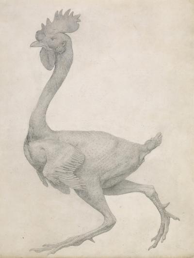 Fowl: Lateral View with Most Feathers Removed-George Stubbs-Giclee Print