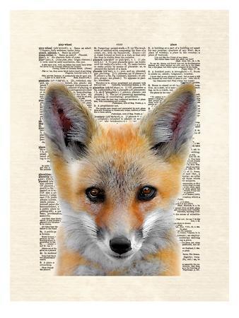 https://imgc.artprintimages.com/img/print/fox-face_u-l-f8c5ct0.jpg?p=0